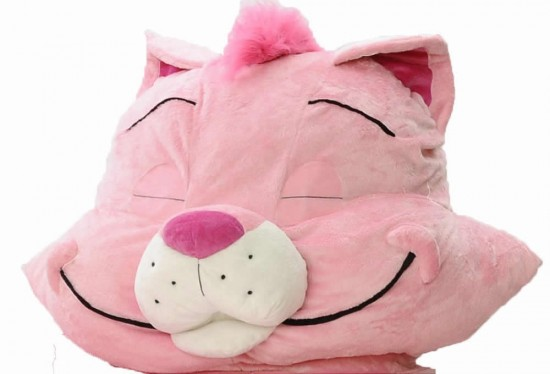 cat bed 2 550x374 The Incredibeds Pinky Petunia Kitty Cat Twin Bed
