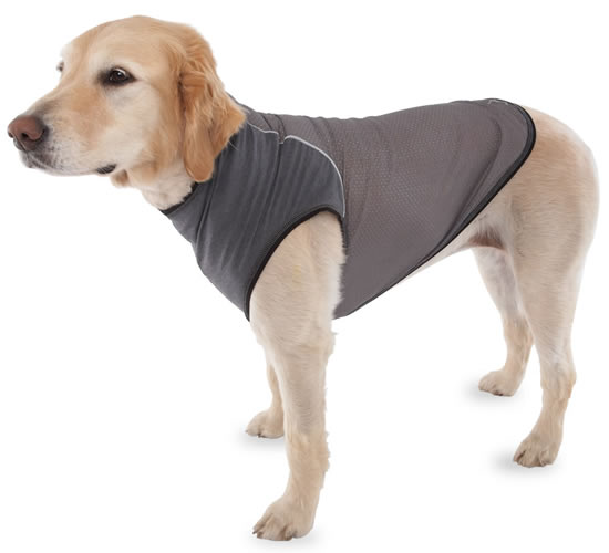 canine vest 1 Insect Repelling Canine Vest keeps the Pooch Protected