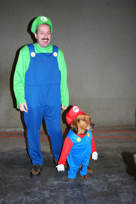 Super Mario Dog Pet dog dressed as Mario for Halloween