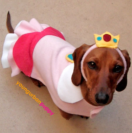 princess_peach_dog_costume.jpg